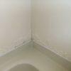 セキスイユニットバスのサビ補修 アイカ バスルームパネル施工例