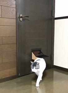 猫用ペットドア,ペット対応クロスを腰壁に施工  petdoor petcatdog cloth