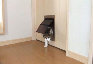 ペットドア後付け アトムペットくぐ~る施工例 petdoor petcatdog