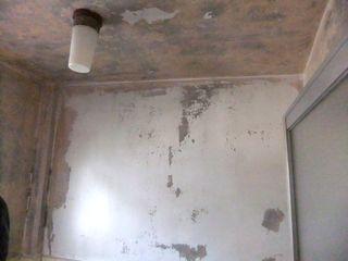 浴室の天井や壁 カビ処理、防カビ塗装 bath-paint